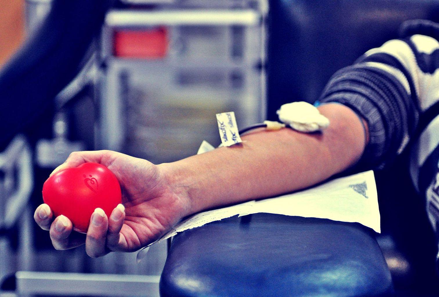 сдача крови на аллергию